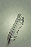 Feather Pen Prints - A Note To The Air Print by Odd Jeppesen