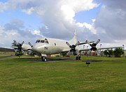 Airfield Prints - A P-3 Orion Aircraft On Display Print by Michael Wood