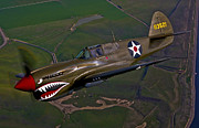Fighter Planes Framed Prints - A P-40e Warhawk In Flight Framed Print by Scott Germain