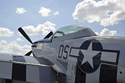 Fighter Star Fighter Prints - A P-51d Mustang Parked On The Flight Print by Stocktrek Images