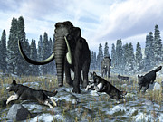 Prehistoric Era Digital Art Posters - A Pack Of Dire Wolves Crosses Paths Poster by Walter Myers