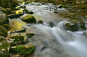 Jeka World Photography Posters - A Painted Stream Poster by Jeka World Photography