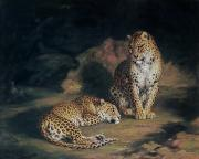 Oil Cat Paintings - A Pair of Leopards by William Huggins