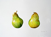 Food And Beverage Paintings - A Pair of Pears by Alison Cooper