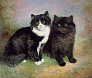 Smiling Painting Posters - A Pair of Pussy Cats Poster by Lilian Cheviot