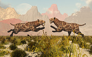 Conflict Framed Prints - A Pair Of Sabre Tooth Tigers In A Fight Framed Print by Mark Stevenson