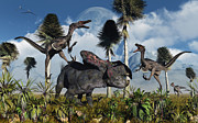 Dromaeosaurid Framed Prints - A Pair Of Velociraptors Attack A Lone Framed Print by Mark Stevenson