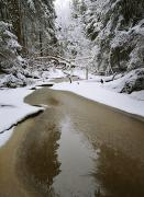 Woodland Scenes Prints - A Partially Frozen Stream Runs Print by Mattias Klum