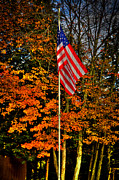 Flag Pole Framed Prints - A Patriotic Autumn Framed Print by David Patterson