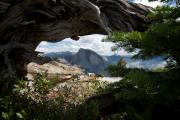 Deadwood Framed Prints - A peek of Half Dome  Framed Print by Chris  Brewington Photography LLC