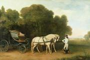 Pair Framed Prints - A Phaeton with a Pair of Cream Ponies in the Charge of a Stable-Lad Framed Print by George Stubbs