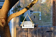 Picket Fence Prints - A Place to Perch Print by Nikki Marie Smith