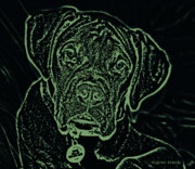 Boxer Puppy Digital Art Metal Prints - A Positive Negative Metal Print by DigiArt Diaries by Vicky Browning