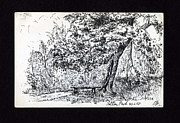 Park Scene Drawings Prints - A Quiet Corner 1958 Print by John Chatterley