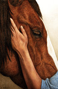 Equine Paintings - A Quiet Moment by Pat Erickson