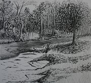 Nobody Drawings - A Quiet Stream by Stacy Bottoms