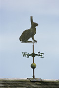 Chatham Prints - A Rabbit-shaped Weathervane Atop A Roof Print by Darlyne A. Murawski