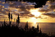 Gary Brandes Photo Acrylic Prints - A Ragged Point sunset Acrylic Print by Gary Brandes