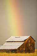 Farming Barns Framed Prints - A Rainbow Arches From The Sky Onto Framed Print by Michael S. Lewis