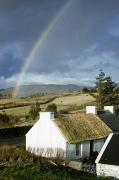 Rural Life Framed Prints - A Rainbow Arches Over A Thatched White Framed Print by Robert Sisson