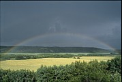 Natural Forces Art - A rainbow spans the sky by Norbert Rosing