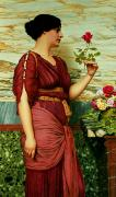 Lady In Red Painting Framed Prints - A Red Rose   Framed Print by John William Godward