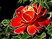 Blooming Digital Art - A Red Rose For You by Mariola Bitner