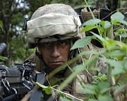 A Rifleman Conceals Himself Print by Stocktrek Images