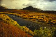 Tombstone Photos - A River Flows Through A Field In Autumn by Nick Norman