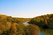 Fall River Scenes Posters - A River Seen in Fall Poster by Sheryl Thomas