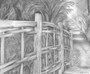 Hand Drawn Originals - A Road Less Traveled by Christopher Brooks