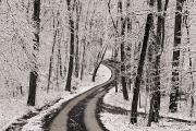Winter Roads Prints - A Road Running Through Snow-covered Print by George F. Mobley