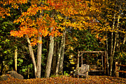Autumn Foliage Photos - A Romantic Autumn Spot by David Patterson
