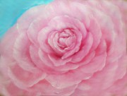 Roses Prints - A Rose of Pink Print by Joni  M McPherson