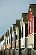 Arkansas Posters - A Row Of Colorful Suburban Homes Poster by Wesley Hitt