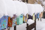 Winter Road Scenes Prints - A Row Of Mailboxes In Winter Print by Ralph Lee Hopkins