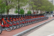 Cities Digital Art Metal Prints - A row of Red Bikes Metal Print by Eva Kaufman