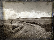 Aging Process Prints - A rural path in Auvergne. France Print by Bernard Jaubert