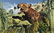 Survival Prints - A Sabre Tooth Tiger Springs Its Trap Print by Mark Stevenson