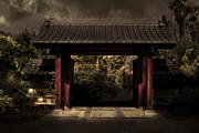 Wingsdomain Art and Photography - A Samurai.s Menagerie . Golden Cut . 7D12779
