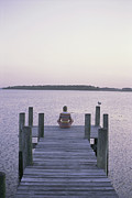 Nautical Structures Photos - A Seagull Watches A Woman Practice Yoga by Taylor S. Kennedy