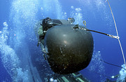 Submerge Photos - A Seal Delivery Vehicle Team Member by Stocktrek Images
