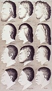 Haeckel Prints - A Series Of Human Heads From Difference Print by Everett