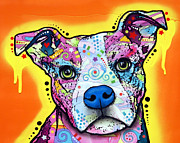Breed Painting Framed Prints - A Serious Pit Framed Print by Dean Russo