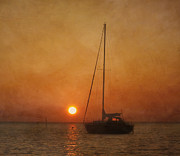Florida Sunset Framed Prints - A Ship in the Night Framed Print by Kim Hojnacki