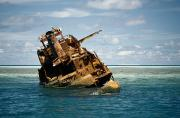 Etc. Photos - A Shipwreck Of The Tubbataha Reef by Wolcott Henry