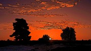 A Silent Sun Print by Viveka Singh