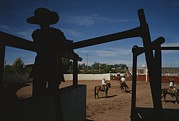 Rodeos Prints - A Silhouetted Cowboy Watches Riders Print by Raul Touzon