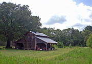 Tobacco Photos - A Simpler Time--Tobacco Barn Series by Suzanne Gaff
