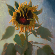Robert Lewis Prints - A Single Sunny Sunflower Print by Robert Lewis
